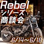 Rebel250/500/1100/1100DCT商談会